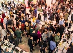 Wine enthusiasts are moving to Osijek: All is ready for the 5th WINEOS