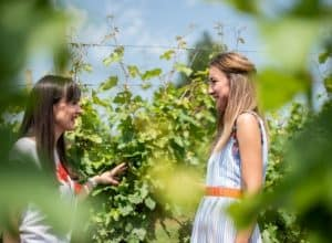 VIDEO Next to Sonoma: Zagreb Wine Story that won the hearts of Wine Spectator readers